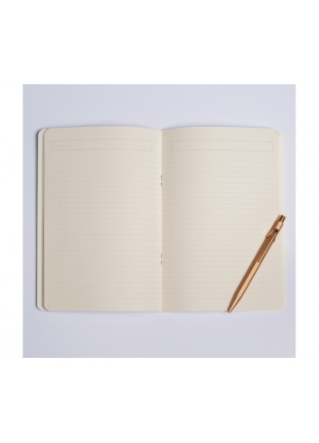 Carnet Pampa Season Paper